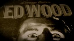 """LA ACTITUD ED-WOOD o como generar """"engendros"""" y estar orgulloso de ello…"""